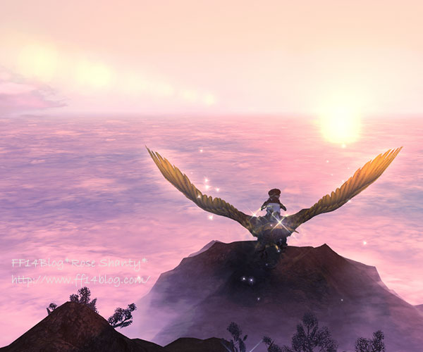極女神ソフィア 鳥